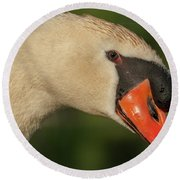 Swan Headshot Round Beach Towel