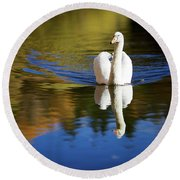 Swan In Color Round Beach Towel