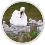 Round Beach Towel featuring the photograph Swan Lake 1 by Bill Holkham