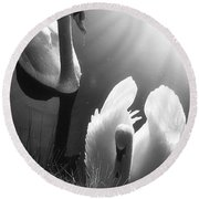 Swan Lake In Winter -  Kingsbury Nature Round Beach Towel