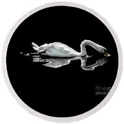 Swan Lake Nature Photo 2121a Round Beach Towel