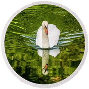 Swan Lake Nature Photo 892 Round Beach Towel
