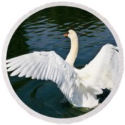 Swan Moment Round Beach Towel