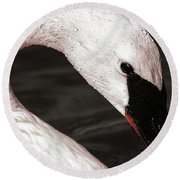 Round Beach Towel featuring the photograph Swan Neck by Jean Noren