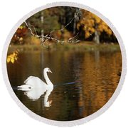 Swan On A Lake Round Beach Towel
