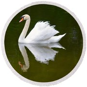 Swan Reflecting Round Beach Towel by Richard Bryce and Family