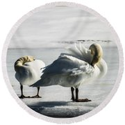 Swans On Ice Round Beach Towel