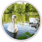 Swans With Chicks Round Beach Towel
