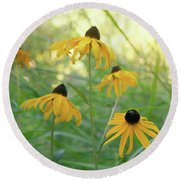 Round Beach Towel featuring the photograph Sweet August by Cindy Garber Iverson