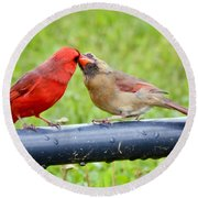Sweet Cardinal Couple Round Beach Towel
