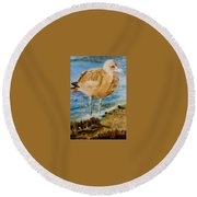 Sweet Gull Chick Round Beach Towel