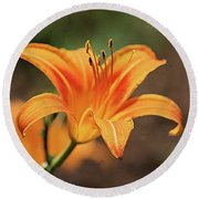 Sweet Lilly In Orange Round Beach Towel