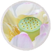 Sweet Lotus Round Beach Towel