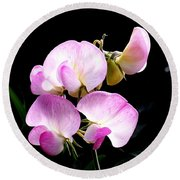 Sweet Peas In Bellingham Round Beach Towel