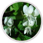 Sweet White Violets Dspf0405 Round Beach Towel
