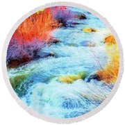 Round Beach Towel featuring the photograph Swift by Nancy Marie Ricketts