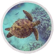 Swimming Honu From Above Round Beach Towel
