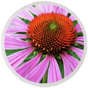 Swirling Purple Cone Flower 3576 H_2 Round Beach Towel