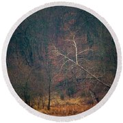 Sycamore Inclination Round Beach Towel