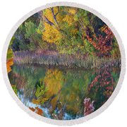 Sycamores And Willows Round Beach Towel