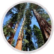 Sylvan Giants 2 Round Beach Towel
