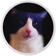Sylvester Tuxedo Cat Round Beach Towel