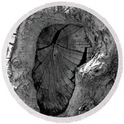 Round Beach Towel featuring the photograph Tahoe Abstract Bark by LeeAnn McLaneGoetz McLaneGoetzStudioLLCcom