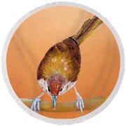 Round Beach Towel featuring the pastel Tailor Bird by Jasna Dragun