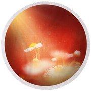 Round Beach Towel featuring the photograph Taking In The Light by Greg Collins