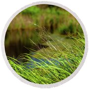 Tall Grass At Boat Dock Round Beach Towel