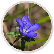 Tall Hydrolea Wildflower Round Beach Towel by Christopher L Thomley