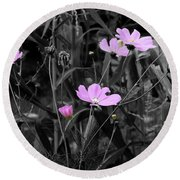 Tall Pink Poppies Round Beach Towel