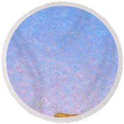 Tall Prairie Dog Round Beach Towel by James W Johnson