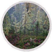 Tamaracks And Heather Round Beach Towel
