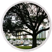 Round Beach Towel featuring the photograph Tampa Shoreline And Skyline Through Tree by Marilyn Hunt