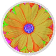 Tangerine Sunshine Round Beach Towel by Ann Johndro-Collins