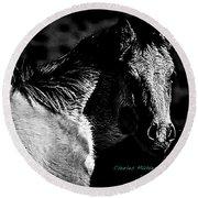 Taos Pony In B-w Round Beach Towel