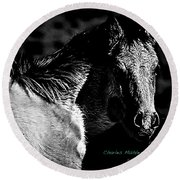 Taos Pony In B-w Round Beach Towel