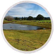 Round Beach Towel featuring the photograph Taree West 666 by Kevin Chippindall