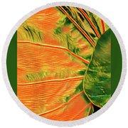 Taro Leaf In Orange - The Other Side Round Beach Towel