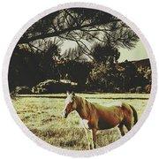 Tasmanian Rural Farm Horse Round Beach Towel