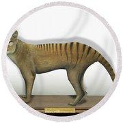 Tasmanian Tiger-thylacinus Cynocephalus-tasmanian Wolf-lobo De Tasmania-tasmanian Loup-beutelwolf    Round Beach Towel