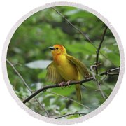 Taveta Golden Weaver #3 Round Beach Towel