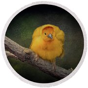 Taveta Golden Weaver  Round Beach Towel
