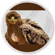 Tawny Eagle Close Up Round Beach Towel