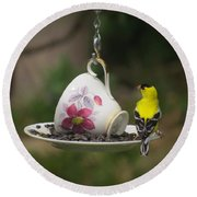 Teacup Finch Round Beach Towel by MTBobbins Photography