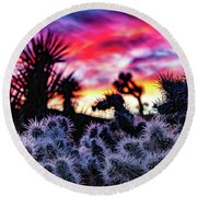 Teddy Bear Cholla Round Beach Towel