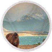 Tekapo Horse Round Beach Towel