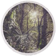 Temperate Rainforest Canopy Round Beach Towel