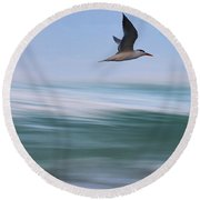 Round Beach Towel featuring the photograph Tern Flight Vert by Laura Fasulo
